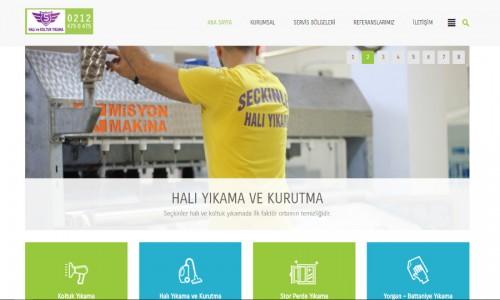 Seçkinler Halı Yıkama Firmasının Web Sitesi Projesi