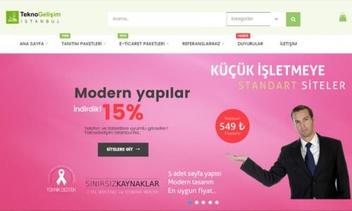 TeknoGelişim İstanbul Web Site Yenilemesi