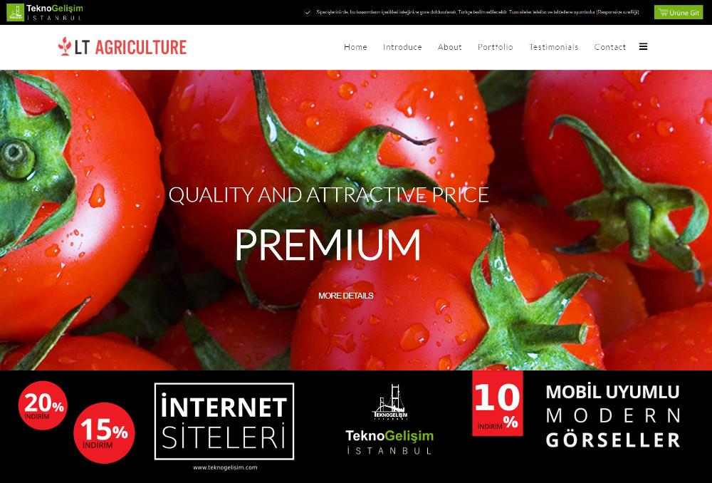 Standart Site Tasarım 15