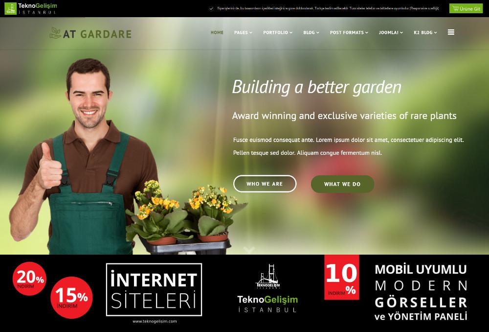 Model Site Estetik Tasarım 03