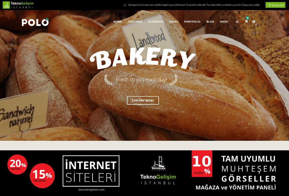Ürün Tanıtımlı Site Sektöre Özel Tasarım 26
