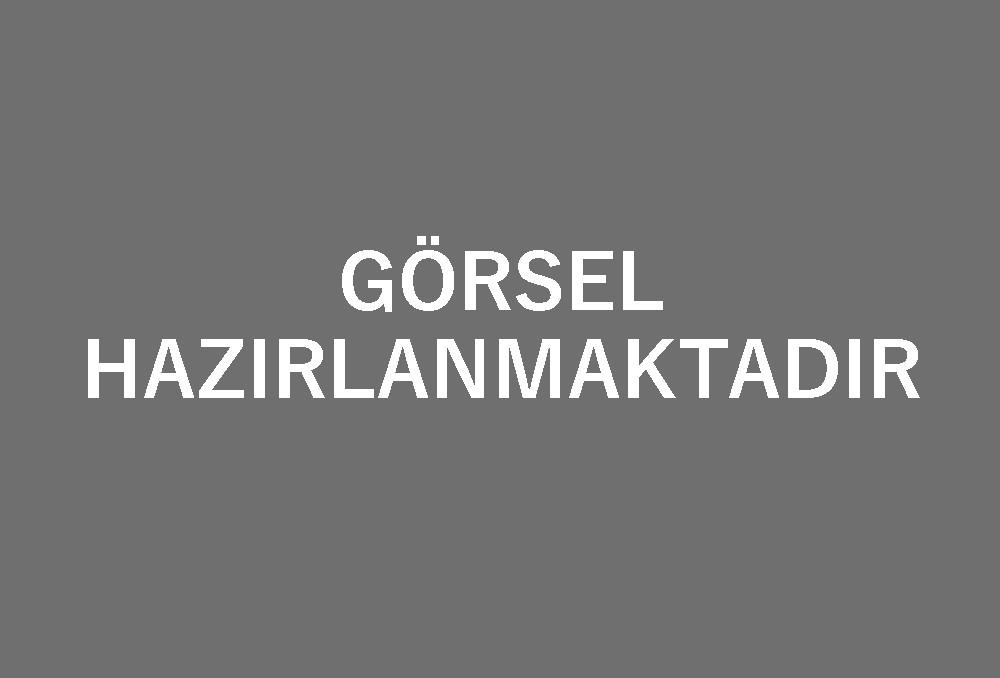 ÜCRETSİZ SİTE TASARIM 11 [Ürün Tanıtımı - Emlak - Sanayi - Oto - Yedek Parça - Turizm - 2.El]